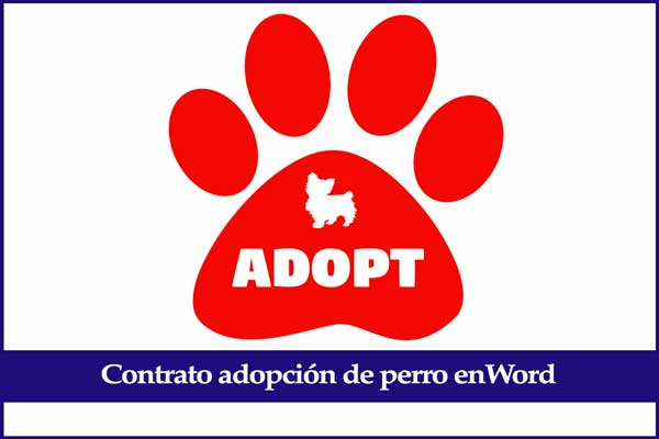 modelo contrato adoptar perro