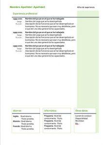 modelo curriculum vitae en word
